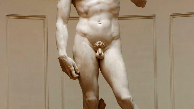 A Human Penis 56