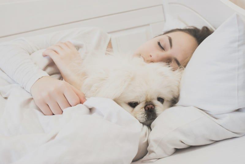 Los hispanos tienen 1,8 veces más posibilidades de dormir poco (menos de seis horas por la noche) que los blancos.