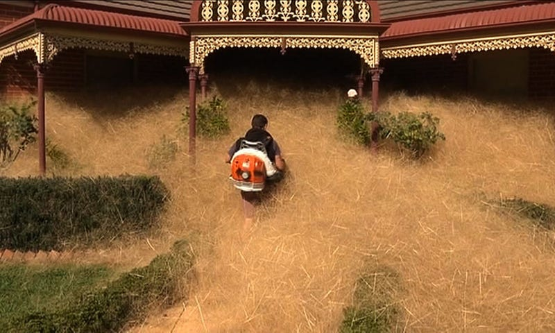 A brave man clearing hairy panic from around a home in Wangaratta (Credit: CHANNEL 7/AFP/Getty Images)