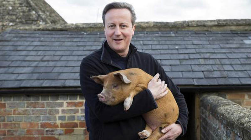 Illustration for article titled The Internet Is Having a Field Day Over David Cameron's Pig Sex Act Allegations
