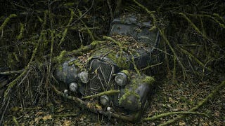 Illustration for article titled Photos of the abandoned antique cars nature has reclaimed