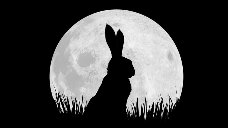 Illustration for article titled Netflix releases first pictures and full cast for an adorable rabbit show called Watership Down