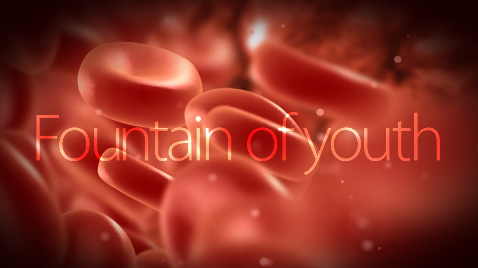 Scientists Clear Path To The Fountain Of Eternal Youth