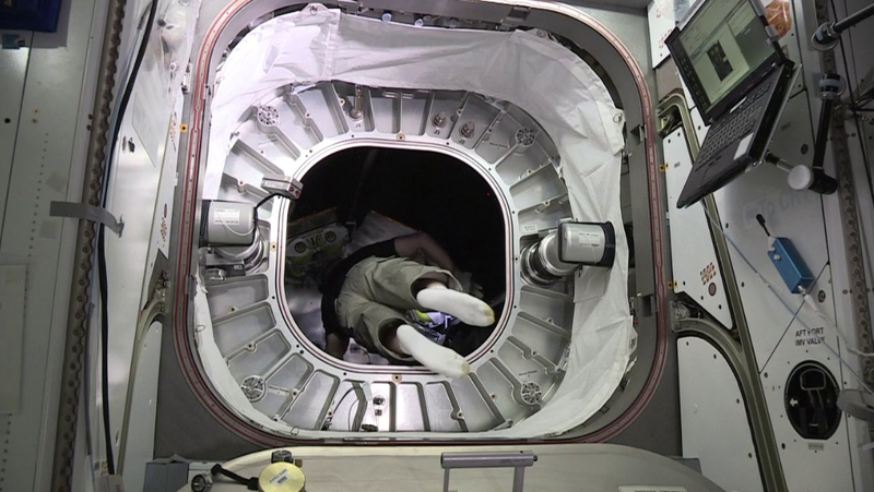 Astronaut Jeff Williams goes into BEAM (Image: Bigelow Aerospace)
