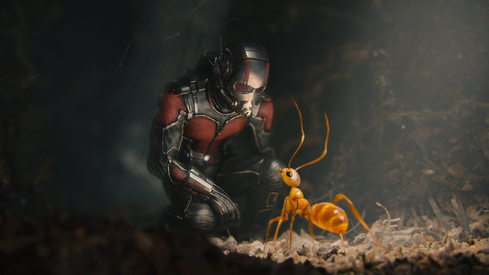 Paul Rudd's Ant-Man and the Wasp Stunt Double Is a Badass Amputee