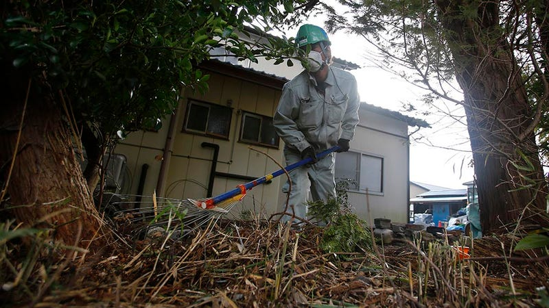 Image: AP Photo/Shizuo Kambayashi