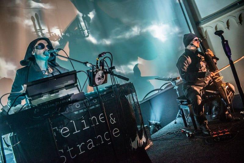 Illustration for article titled Feline and Strange: Berlin's electro-wave cabaret duo