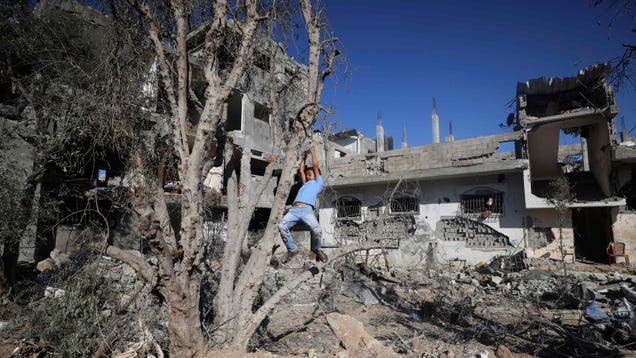 Palestine Is Suffering an Ecological Apartheid