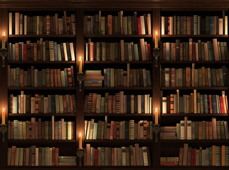 Illustration for article titled What Book Simply Has To Be Read In One Sitting?
