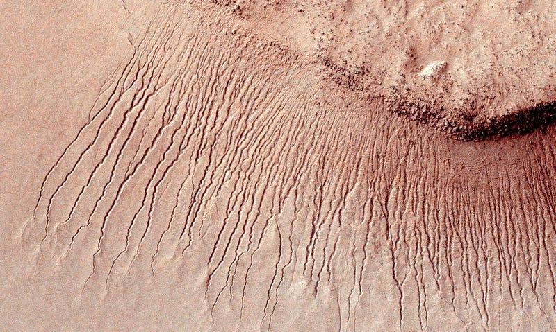 Canales supuestamente formados por agua líquida. Foto: NASA
