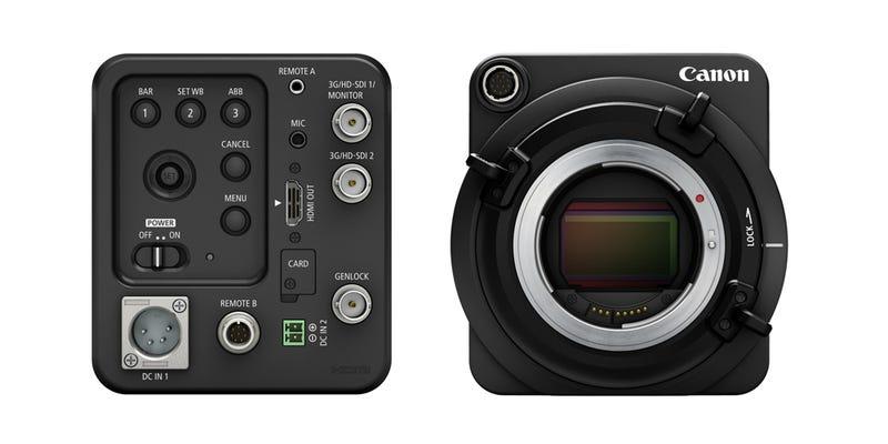 Illustration for article titled Esta nueva cámara con ISO 4.000.000 prácticamente ve en la oscuridad