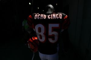 Illustration for article titled Reebok Benches Ocho Cinco