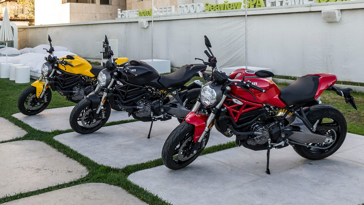Don't Be Scared Of The Ducati Monster