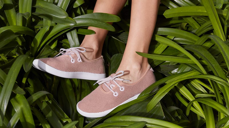 Illustration for article titled Allbirds Goes Vegetarian With Their Newest Shoes, Made From Trees