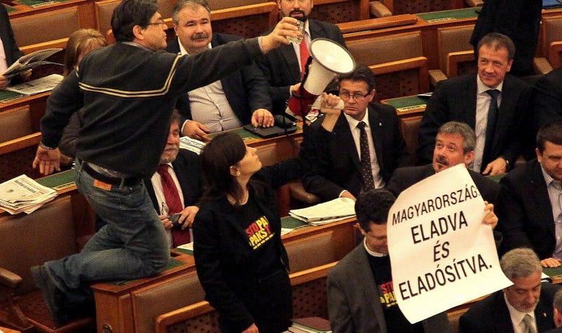 Illustration for article titled Éljen! Visszatért a börleszk a parlamentbe!