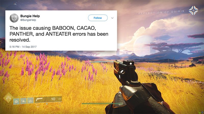 Destiny Error Code Names Ranked