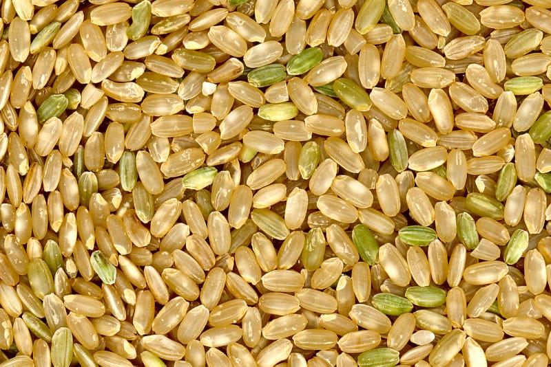 arroz integral ventajas desventajas