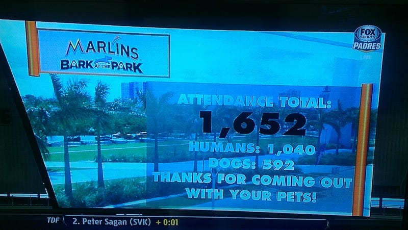 Illustration for article titled 592 Of The 15,929 Attendees At Marlins Park Were Dogs