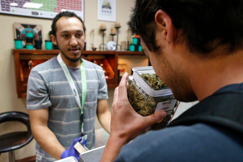 Cannabis. AP