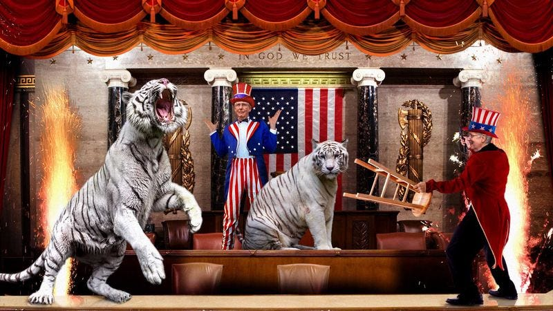 Illustration for article titled 4 Senators Mauled During Congressional Tiger Show