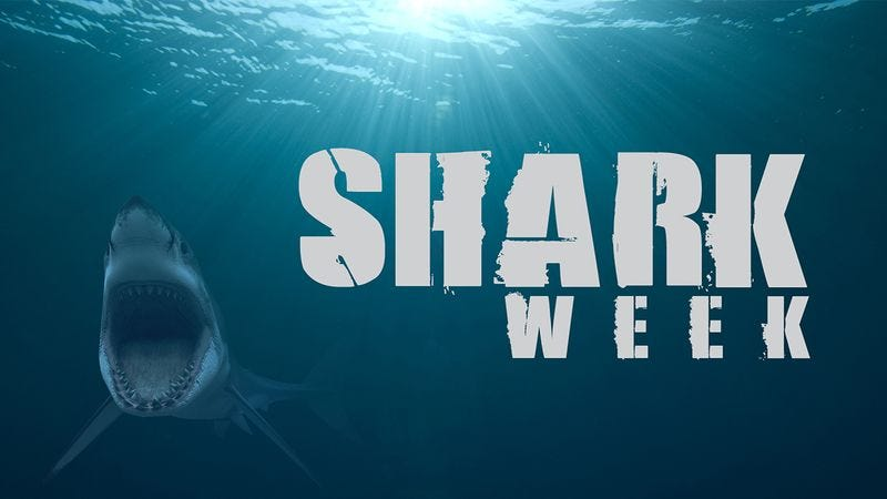Illustration for article titled 7 Moments That 38-Year-Old Doug Kastner Would Like To See During 'Shark Week'