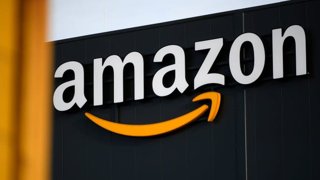 Amazon Workers Sue Over  Culture of Fear  That Prioritizes Productivity Over Covid-19 Concerns
