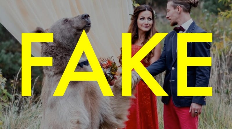 Illustration for article titled That Russian Bear Wedding Was Totally Fake