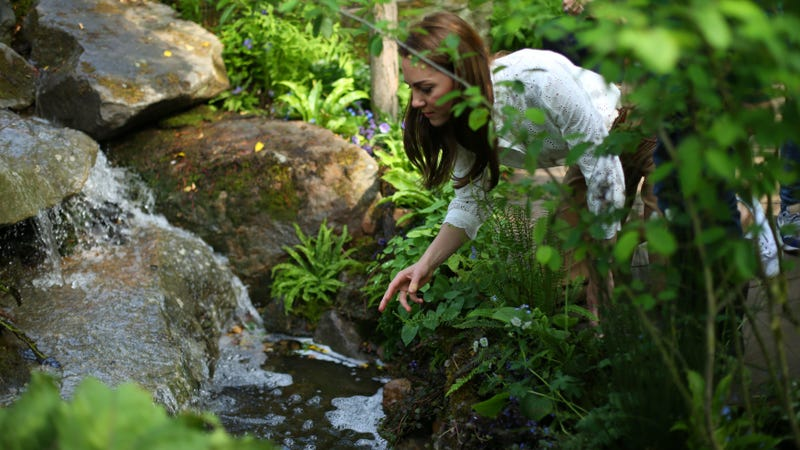 Illustration for article titled Here's Kate Middleton by a Babbling Brook