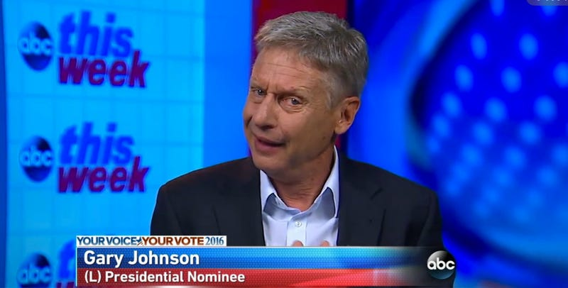 Gary Johnson, Libertarian nominee for president, appearing on ABC's This Week (Screenshot)