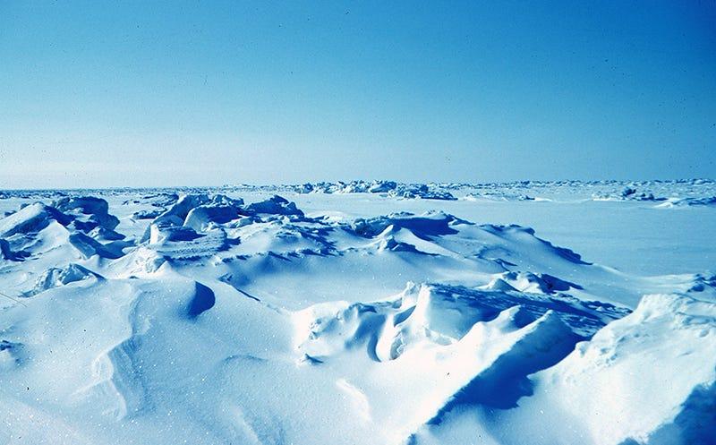 Paisaje de Alaska. Todo el planeta tuvo este aspecto durante millones de años. Foto: Wikipedia