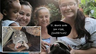 Illustration for article titled Una tortuga sobrevive 30 años en la caja de un tocadiscos