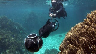 Illustration for article titled Google Street View Is Coming to the Great Barrier Reef
