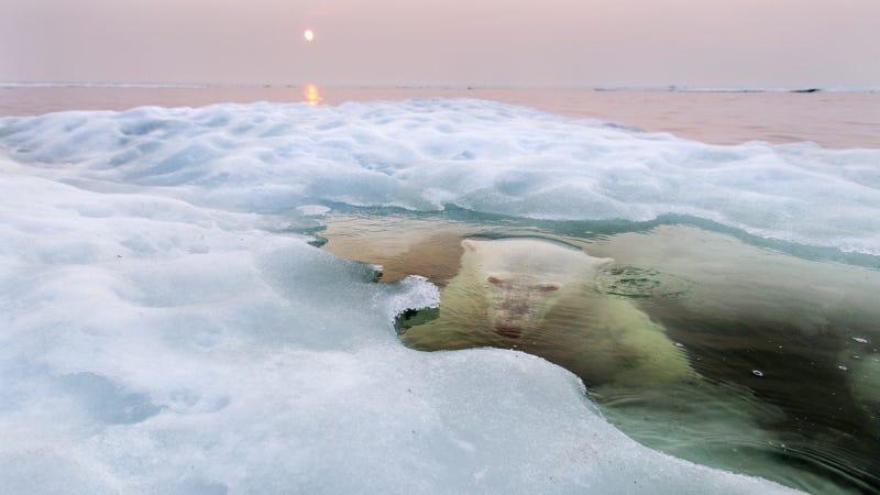 Imagen: Paul Souders / National Geographic