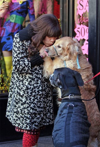 Illustration for article titled America Ferrera Muzzles Nuzzles Up