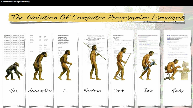 learn the basics of four programming languages to get to the early
