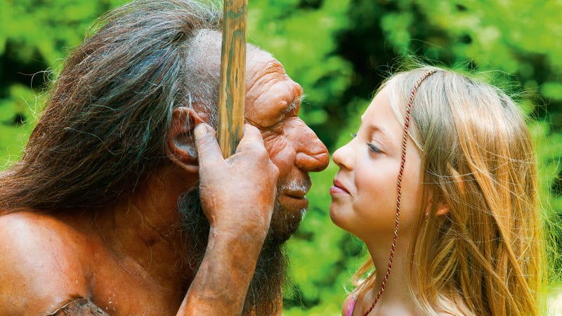 Left: A reconstruction of an adult Neanderthal. Right: A non-reconstructed, actual human girl.