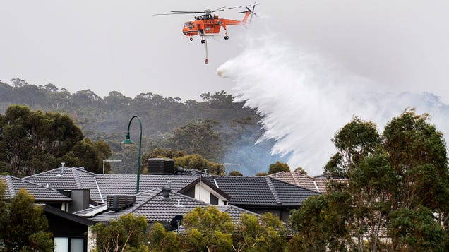 Bushfires Still Ravaging Australia, With Thousands Reportedly Fleeing to Beaches in Victoria State