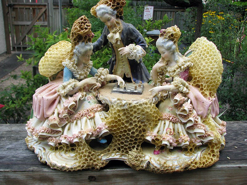 Illustration for article titled Artist makes gorgeous sculptures in collaboration with bees