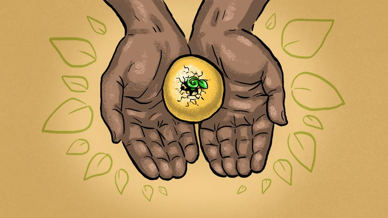 Illustration for article titled When to Consider Annuities If You Want to Safeguard Your Retirement