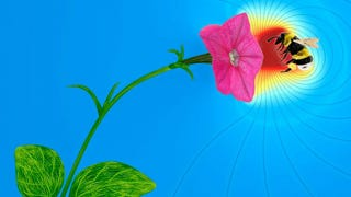 Illustration for article titled Flowers Communicate with Electricity