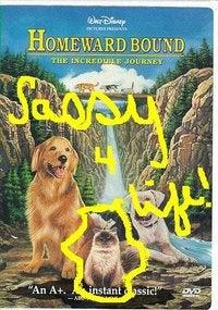 Illustration for article titled SASStalk? I'm into it.