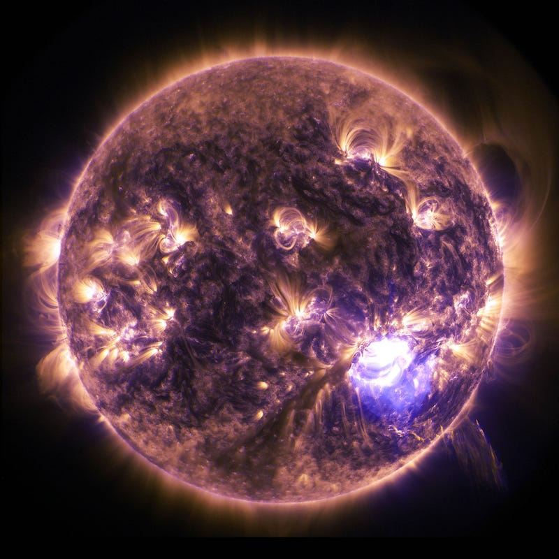 Illustration for article titled This Solar Flare Image Is Beautiful In Its Simplicity