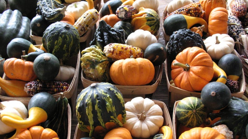 A Complete Ranking Of Edible Gourds And How To Eat Them