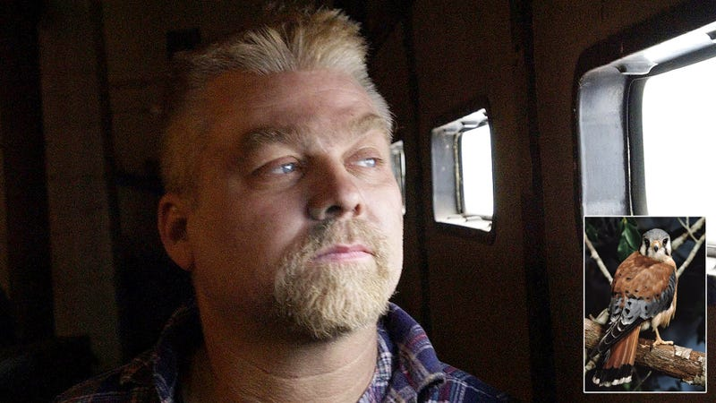 Illustration for article titled Exonerated? New Evidence Reveals That Steven Avery Likely Couldn't Have Killed Teresa Halbach Because He Was Transformed Into A Bird At The Time Of The Murder