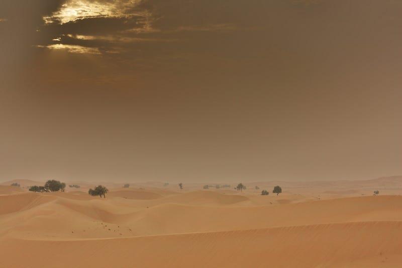 Illustration for article titled Majdnem vettem egy palack sivatagi levegőt