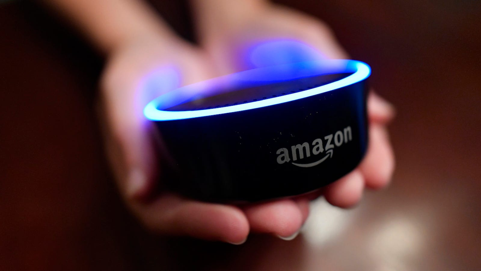 If You Care About Privacy, Throw Your Amazon Alexa Devices Into the Sea