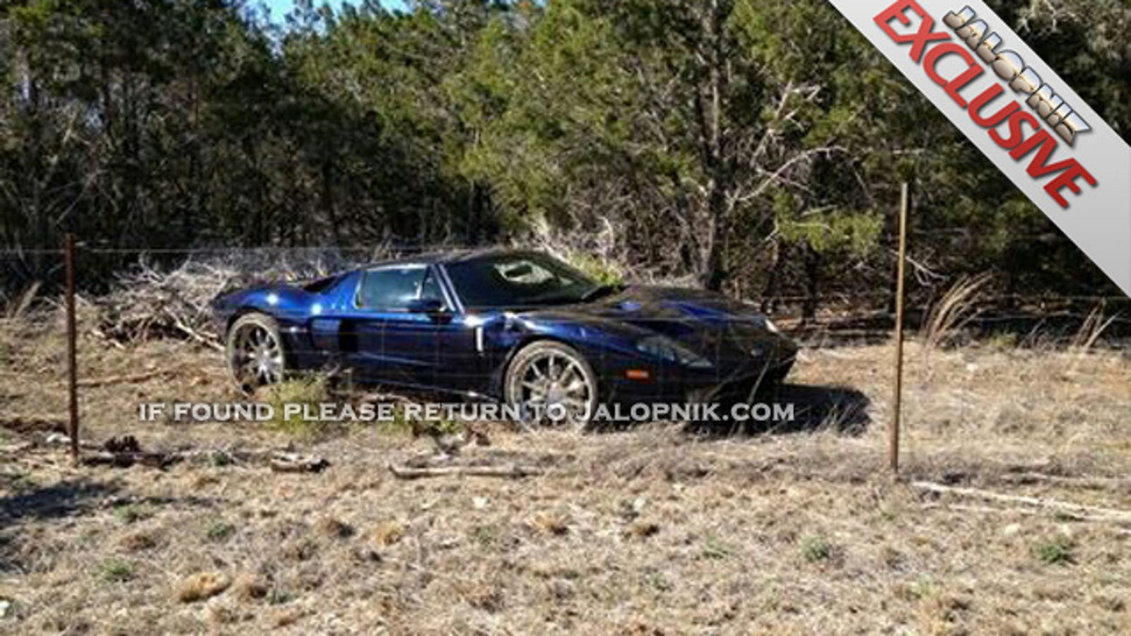 EXCLUSIVE: Jesse James' supercar crashes into neighbor's yard