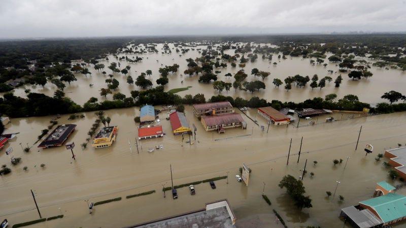 Illustration for article titled El huracán Harvey deja una planta química próxima a Houston en riesgo grave de explosión