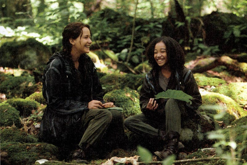 Illustration for article titled The Only Hunger Games GIF You'll Ever Need, Starring Katniss and Rue