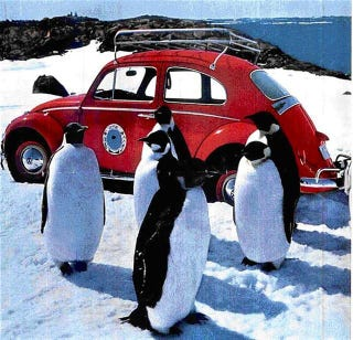 Illustration for article titled Antarctica 1 Volkswagen Gallery